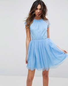 Платье мини для выпускного из кружева и тюля ASOS PREMIUM - Синий