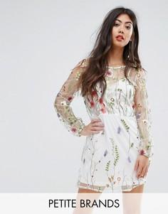 Сетчатое платье мини с вышивкой Boohoo Petite - Бежевый