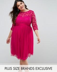 Кружевное платье с юбкой из тюля Little Mistress Plus - Розовый