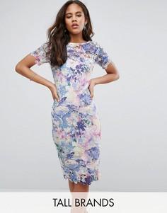 Кружевное платье-футляр с принтом Paper Dolls Tall - Мульти