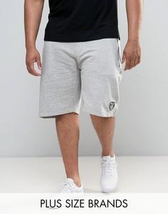 Трикотажные спортивные шорты Loyalty and Faith PLUS - Серый