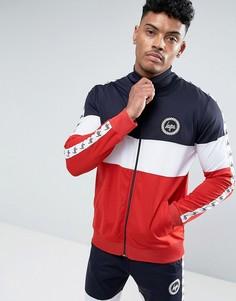 Трехцветная спортивная куртка со вставками и лентой Hype - Темно-синий