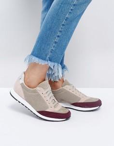 Замшевые кроссовки ASOS DEED - Мульти