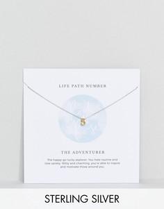 Серебряное ожерелье с подвеской в форме цифры 5 Rock N Rose - Золотой