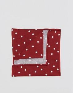 Платок-паше в бордовый горошек ASOS - Красный