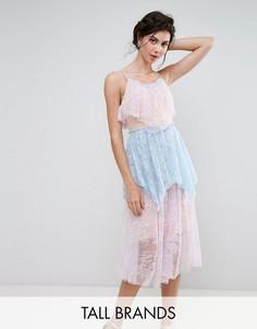 Кружевное ярусное платье миди True Decadence Tall - Мульти