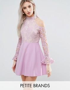 Кружевное короткое приталенное платье с открытыми плечами Missguided Petite - Фиолетовый