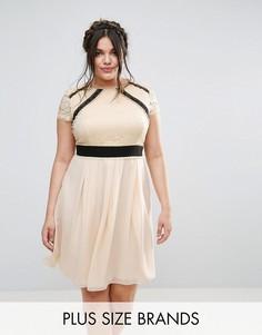 Кружевное приталенное платье с контрастной юбкой 2 в 1 Little Mistress Plus - Кремовый