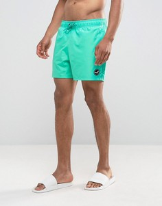 Однотонные шорты для плавания Hollister - Зеленый