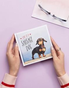 Книга Love is a Sausage Dog - Мульти Books
