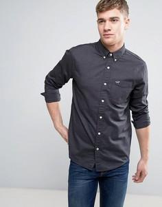 Черная эластичная оксфордская рубашка узкого кроя с логотипом Hollister - Черный