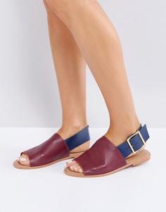 Кожаные сандалии ASOS FLEET STREET - Мульти