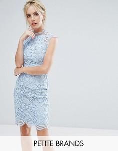 Кружевное платье-футляр Chi Chi London Petite - Синий