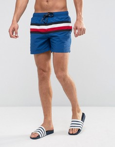 Синие шорты для плавания с полосками Tommy Hilfiger - Синий