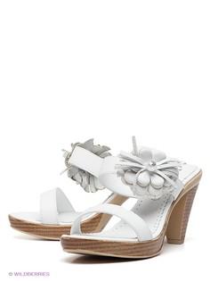 Сабо Felina shoes