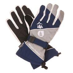 Перчатки Picture Organic Aramis Glove Dark Blue/Grey