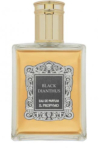 Парфюмерная вода Black Dianthus Il Profvmo