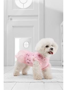 Платья для животных Nothing but Love