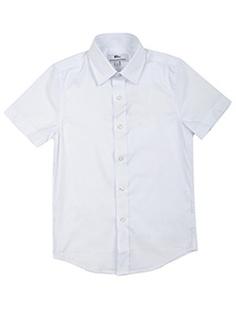 Рубашки BORELLI