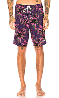 Dark wild palm trunk - Stussy