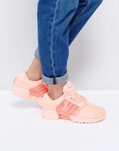 Кроссовки бледно-кораллового цвета adidas Originals Climacool - Розовый