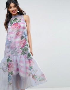 Платье миди из органзы с полосками на топе и вышивкой ASOS SALON - Мульти