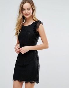 Кружевное платье мини с фигурным краем Liquorish - Черный