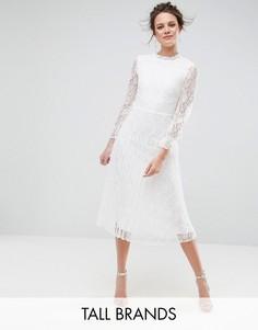 Короткое приталенное кружевное платье с высоким воротом Little Mistress Tall - Кремовый