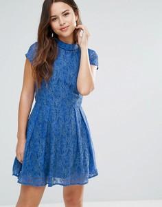 Кружевное платье с отделкой на вороте Louche Nichole - Синий