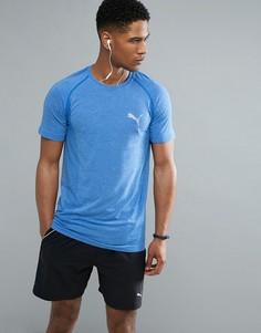 Синяя футболка Puma Running evoKNIT 59063208 - Синий