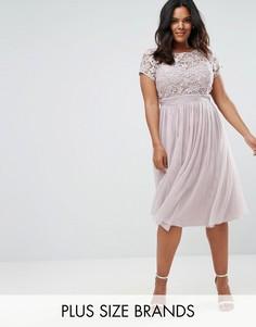 Платье миди с кружевным топом и юбкой из тюли Little Mistress Plus - Бежевый