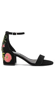 Туфли на каблуке inca - Steve Madden