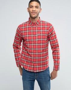 Оксфордская рубашка слим в красную клетку тартан Hollister - Красный