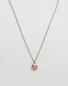 Золотистое ожерелье с подвеской Ted Baker - Золотой