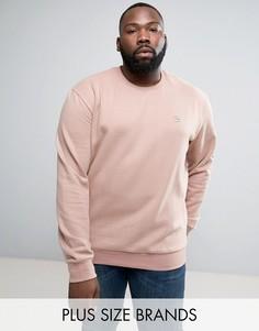 Свитшот с круглым вырезом Le Breve PLUS - Розовый