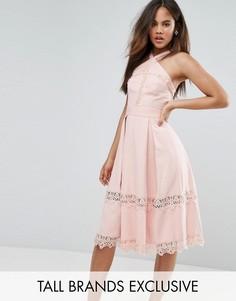 Приталенное платье с высоким воротом и кружевными вставками True Decadence Tall Premium - Розовый