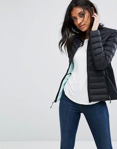 Дутая куртка Hollister - Черный