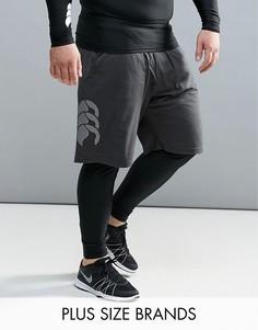 Черные шорты Canterbury PLUS Vapordri E523410-733 - Черный