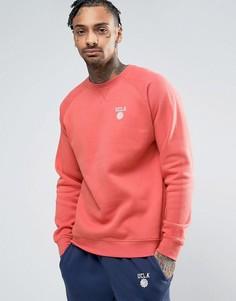Свитер выцветшего розового цвета с логотипом на груди UCLA - Розовый