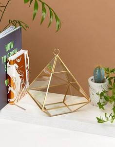 Латунный террариум пирамидальной формы Sass & Belle - Мульти