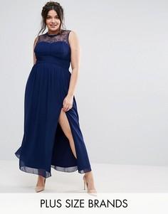 Платье мини с кружевным лифом Little Mistress Plus - Темно-синий