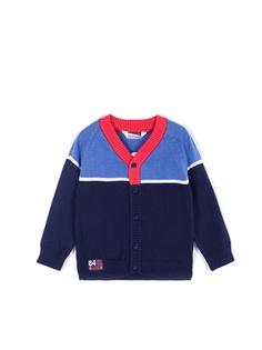 Пуловеры Coccodrillo