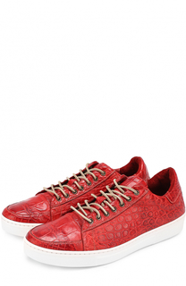 Кеды из кожи крокодила на шнуровке Dami