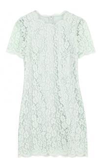 Кружевное мини-платье с коротким рукавом Dolce & Gabbana
