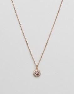 Ожерелье-цепочка с кристаллами на подвеске Ted Baker Sela - Золотой