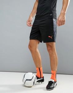 Черные спортивные шорты Puma Football evoTRG 65534406 - Черный