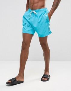 Шорты для плавания на шнурке с логотипом на ленте Calvin Klein - Синий