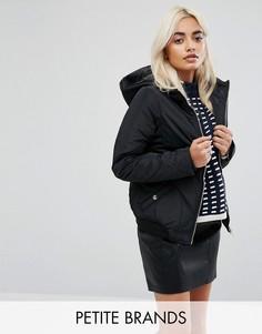 Укороченная стеганая куртка с капюшоном Noisy May Petite - Черный