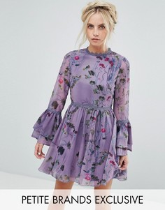 Короткое приталенное платье с цветочным принтом и расклешенными рукавами Little Mistress Petite - Фиолетовый