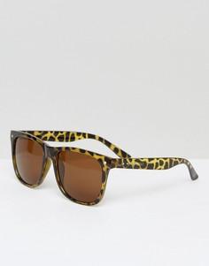 Черепаховые солнцезащитные очки в стиле ретро Jack & Jones - Коричневый